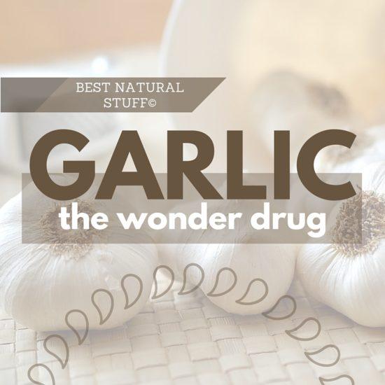 Medicinal Garlic